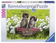Puzzle Pisici la picnic, 1000 piese - Ravensburger