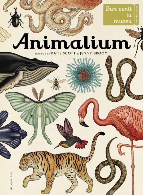 Animalium. Bun venit la muzeu. Intrarea liberă - Jenny Broom, Katie Scott